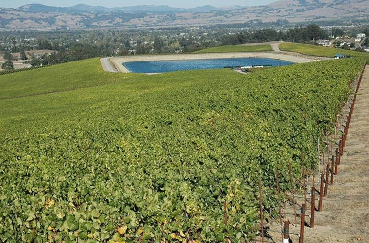 Gallo reservoir with recycled water from city of Santa Rosa / Photo courtesy of Mark Millan
