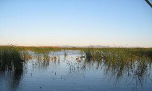 North Bay Water Reuse Program